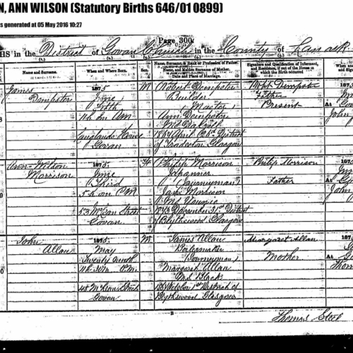 1875. 1st cousin 2xremoved. MORRISON, Ann Wilson Birth record